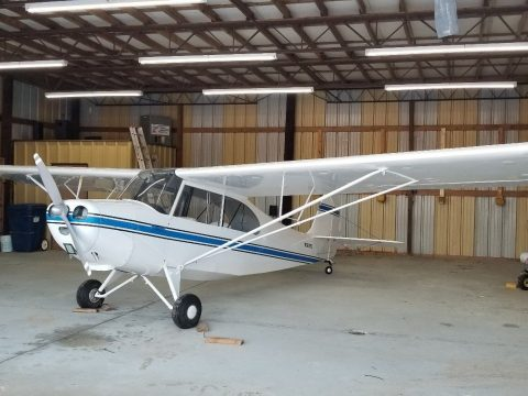new paint 1946 Aeronca Champ for sale