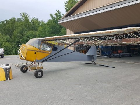 Project 1941 Taylorcraft aircraft for sale