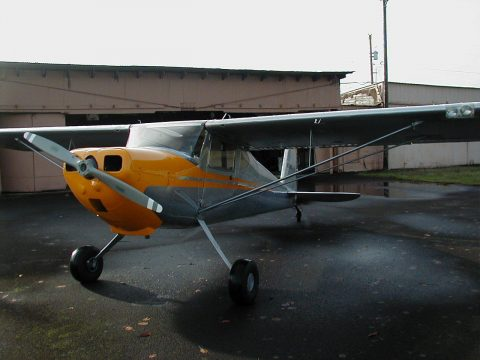 hangared gem 1946 Cessna 140 aircraft for sale