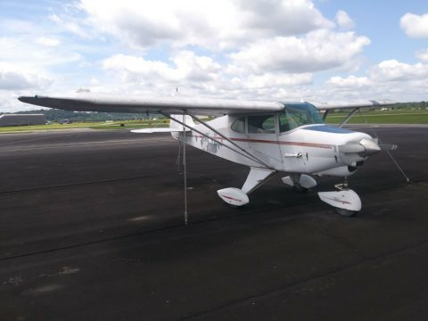 needs TLC 1952 Piper PA 22 Tri Pacer aircraft for sale